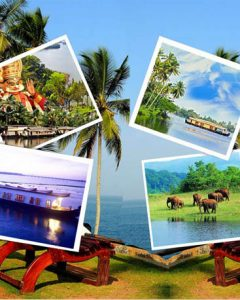 Category Kerala